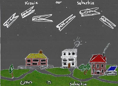 kraaie-in-suburbia