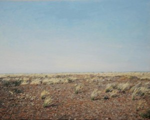 """Kalahari Hardeveld"" Oil on canvas, 55cm x 70cm"