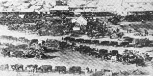 Transportryers in Kimberley