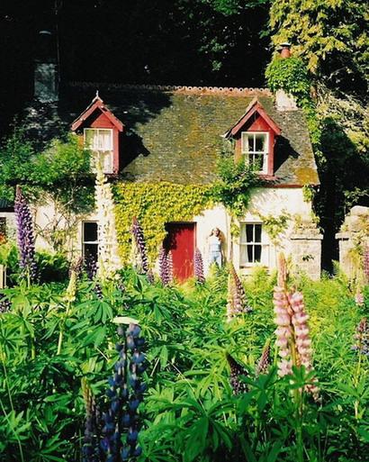 Die woudhuis in die Skotse Hoogland waar Carina & Gerrit vir ses maande in 2002 gewoon het.