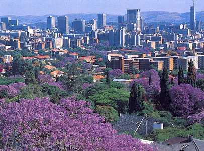 Jakaranda seisoen in Pretoria