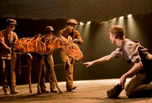 Joey as 'n vulletjie in 'War Horse'