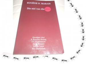 Roetes - Die siel vd Mier
