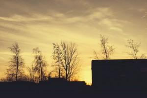 'n Geel gloed bring 'n nuwe dag