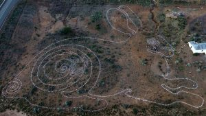 Riverene Rabbit Thinking Path