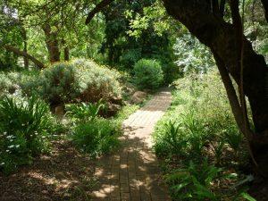 noordwes-universiteit-botaniese-tuine-1